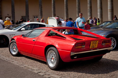 carpr0n:  Suspenders Starring: Maserati Merak (by )