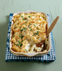 foodfuckery:  Summer penne au gratin with yoghurt, two cheeses and béchamel sauce Recipe