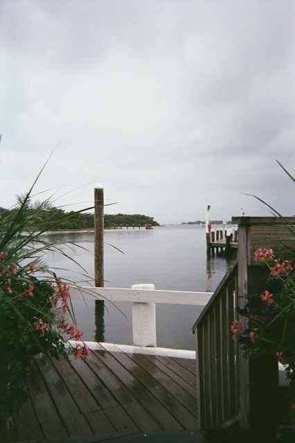 champlin's dock, block island