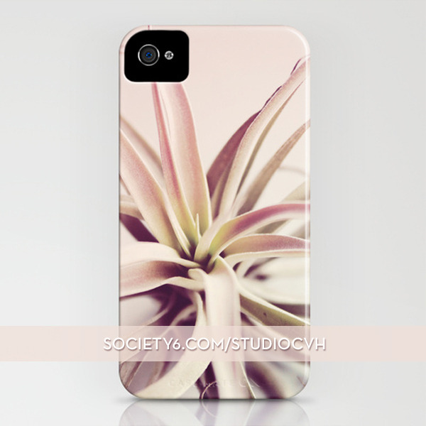 ❤ ❤ ❤ Check out my new Society 6 shop, where I am offering art prints, iPhone cases, and other goodies featuring some of my air plant photography! http://society6.com/studioCvH