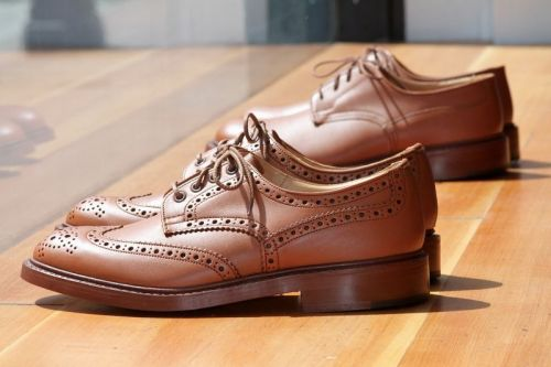 mugenstyle:  Beautiful Wingtips