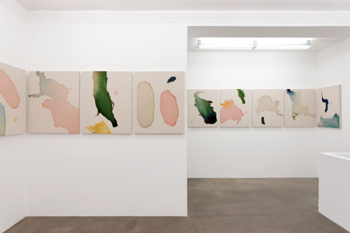 Landon Metz, Still, TORRI, Paris, Installation view, 2012