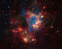 This composite image shows a superbubble in the Large Magellanic Cloud (LMC), a small satellite galaxy of the Milky Way, located about 160,000 light years from Earth. Many new stars, some of them very massive, are forming in the star cluster NGC 1929, which is embedded in the nebula N44. The massive stars produce intense radiation, expel matter at high speeds, and race through their evolution to explode as supernovas. The winds and supernova shock waves carve out huge cavities called superbubbles in the surrounding gas. (via CHANDRA)