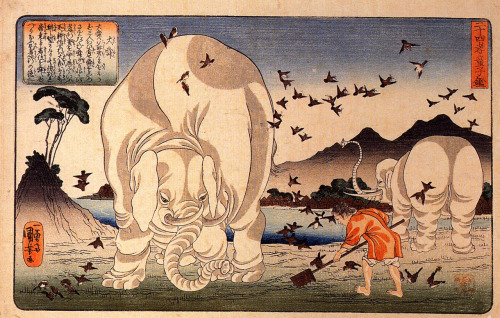 taishun with elephants utagawa kuniyoshi