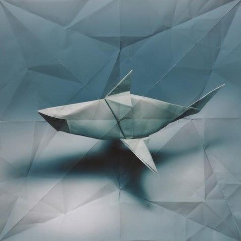 origami  by marc fichou