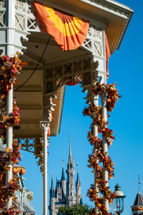 fuckyeahdisneyphotography:  Magic Kingdom Fall Decor