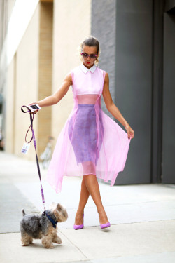 ivsmanifiesto:  Natalie Joos is ethereal in pink with a pooch.