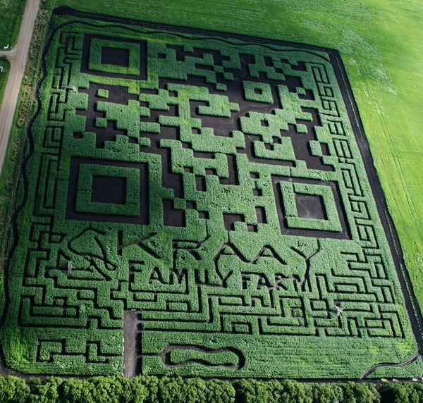 "wired:  futurejournalismproject:  Just Another Seven-Acre-Large QR Code Via TechSpot:  Kraay Family Farm, a Canadian-based grower nestled near the town of Lacombe, has set the world's record for creating the largest QR code ever made. If that weren't enough, what makes this QR code even more special is its composition: farmers carved out the QR code from a gigantic corn field. The Minecraftian feat covers 7 acres or about 95,000 square feet and incidentally doubles as the largest corn maze on record… …When Kraay was asked about how he came up with the idea, he told Canadian television journalists, ""I was just relaxing, reading a magazine and saw a whole bunch of QR codes and I thought, you know, it looked a whole lot like a maze I wonder if we can make one"".  And yes, it supposedly works. And yes, the Guinness Book of World Records does have a category for world's largest QR code. And yes, this is it. So now you know. You can even visit if you happen to find yourself near Lacombe, Alberta.  QR codes are now, literally, everwhere. EVEN IN CANADIAN CORN FIELDS.  So, how does one go about scanning this?"