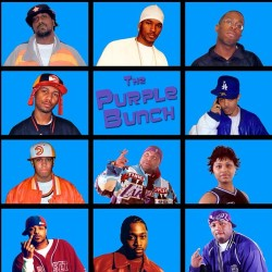 diceysociety:  The Purple Bunch