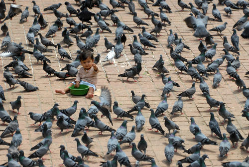 Photo of the day: Pigeons flock to Nepalese child for foodA toddler hands out scraps of food to a large flock of pigeons on Sept. 6 while sitting on the pavement of Durbar Square in Kathmandu, Nepal. Classified as a UNESCO World Heritage Site, the famous square was built nearly one thousand years ago as a plaza for the city's old royal palace.