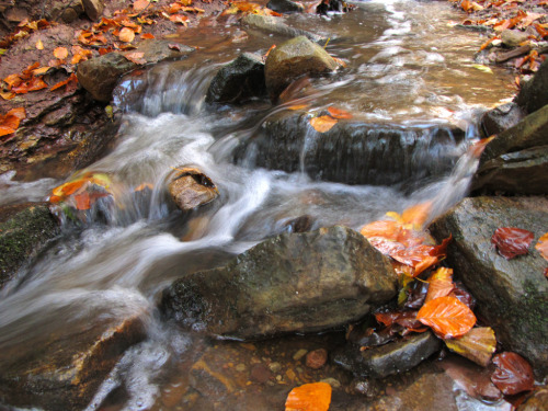 Powerful Fall Creek with tiny little Waterfalls (by Batikart)