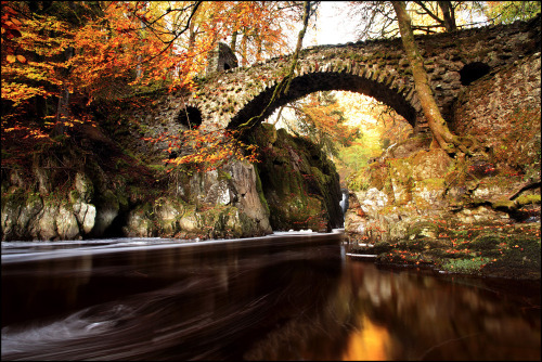 Autumn Colours Hermitage Bridge (by angus clyne)