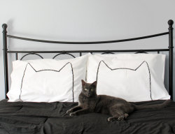 etsy find of the day 1 | 10.10.12cat nap pillowcase set by xenoteesgahhhhh MUST HAVE THESE PILLOW CASES!! that little grey dude on the bed even looks a little like my grizzy <3 he and roger would enjoy sleeping on these :)