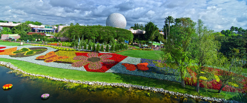 mywdw:  A floral view from the monorail.