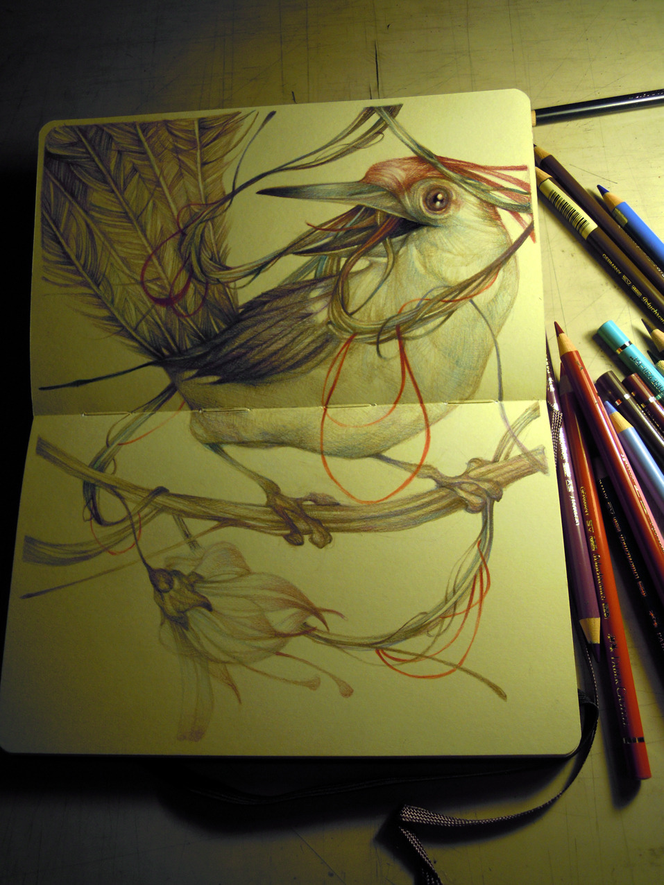 marcomazzoni:  the songwriter bird on moleskine