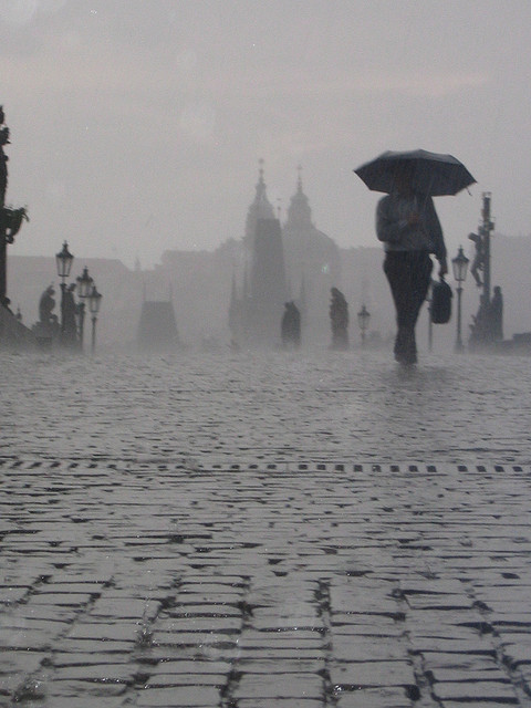 Charles Bridge in the Rain, Prague By:  natasha.m