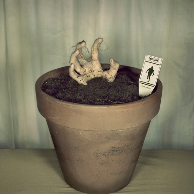 Potted Zombie Plant Grow your own zombie! They're in season now, you know. Sold on The Fancy.