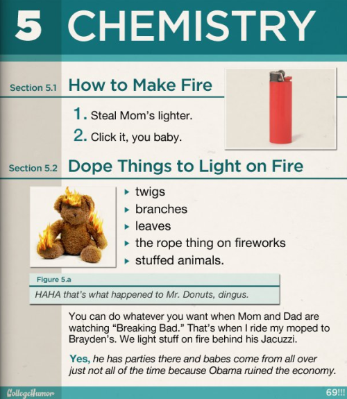 If Older Brothers Wrote Text Books [Click to continue reading]