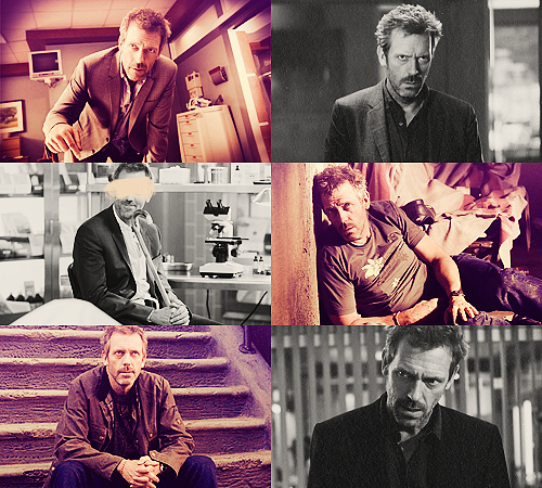 03. Gregory House - House M.D. 25 males + 25 females / Top 50 favorite tv characters in same colors
