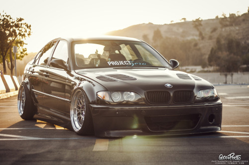 itsgoco:  Boogie's E46 @booooogs.tumblr.com Taken by me.