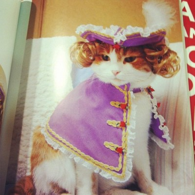 Get on my level. by ambercox #aristocat #rcoi