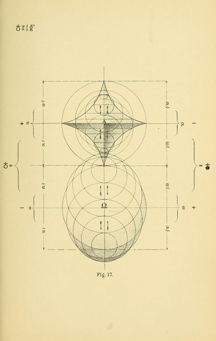 "gracewashko:  ""The symbolic forms which Mr. Betts has evolved through his system of Representation resemble, when developed in two dimensions, conventionalised but very scientifically and beautifully conventionalised leaf-outlines. When in more than two dimensions they approximate to the forms of flowers and crystals. …. The fact that he has accidentally portrayed plant-forms when he was studying human evolution is an assurance to Mr. Betts of the fitness of the symbols he has developed, as it affords presumptive evidence that the laws he is studying intuitively admit of universal application."""