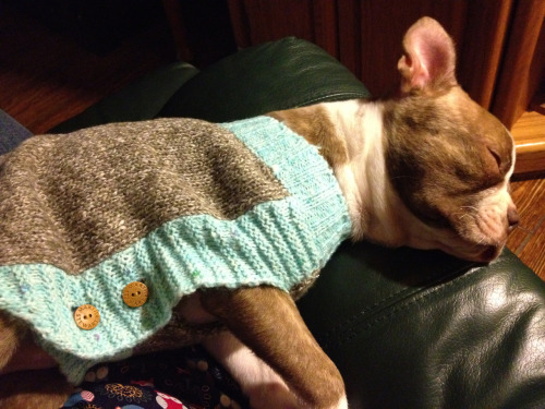 I love my new sweater! It makes me feel cuddly, and after the long day I've had today… Well, let's just say it's nice to snuggle up in something warm and cozy!