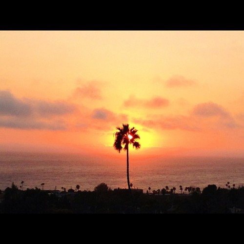 Sunset in Laguna Beach (Taken with Instagram at Temple Hills Drive Laguna Beach)