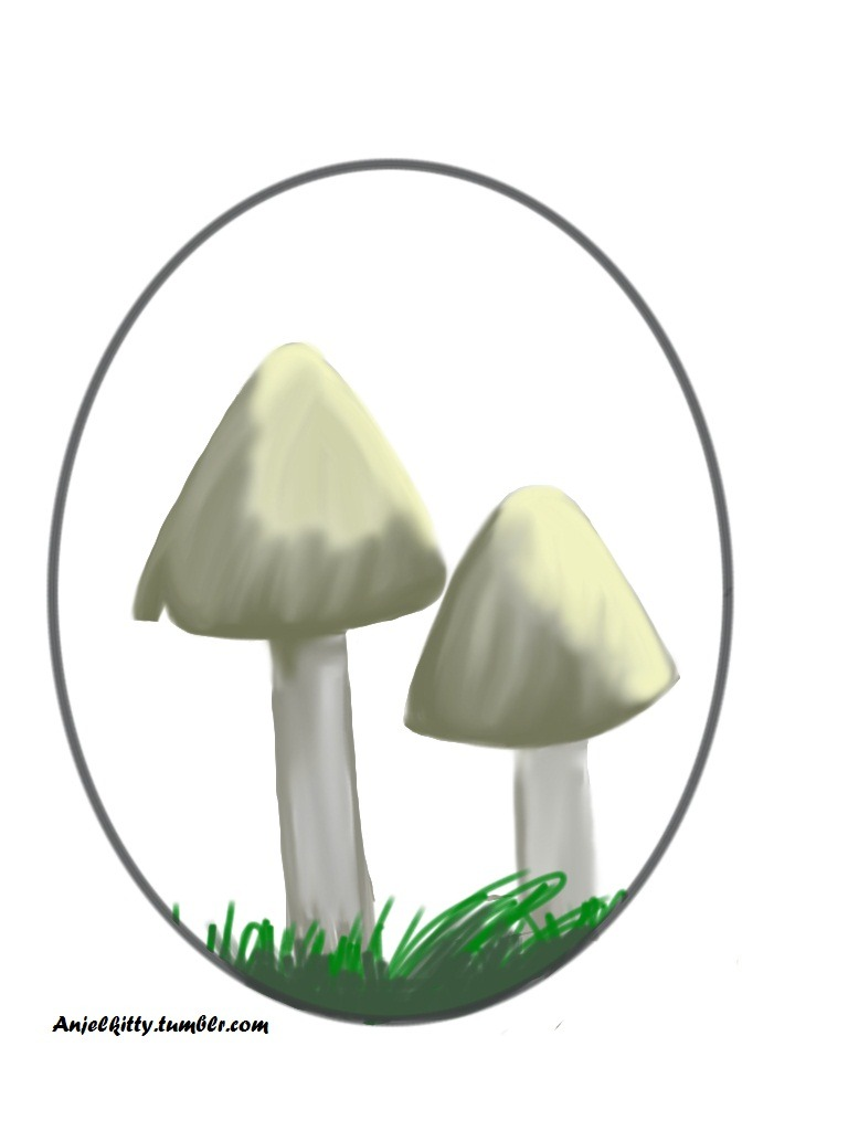 Quick art of some mushrooms that will be used for a worksheet to teach kids about fungi.