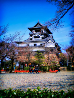犬山城 (Inuyama Castle) The Inuyama-jo in Inuyama, Aichi is the only privately owned castle in Japan and is one of the nicest original examples of feudal Japanese fortifications. Originally built in 1537 by Oda Nobuyasu, grandfather of Oda Nobunaga, the warlord who helped end the long civil war that preceded the Tokugawa Shogunate, it is one of a handful of castles designated a Japanese national treasure.