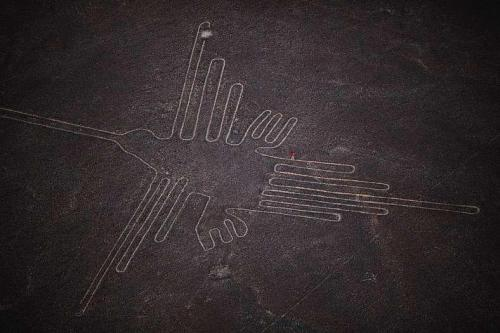 harvestheart:  Colibri, Nazca, Peru Drawing of a colibri in the desert outside en:Nazca Related articles Pigs and squatters threaten Peru's Nazca lines (news.yahoo.com)
