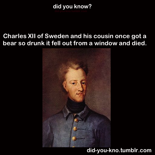did-you-kno:  Source  This is why I love being Swedish