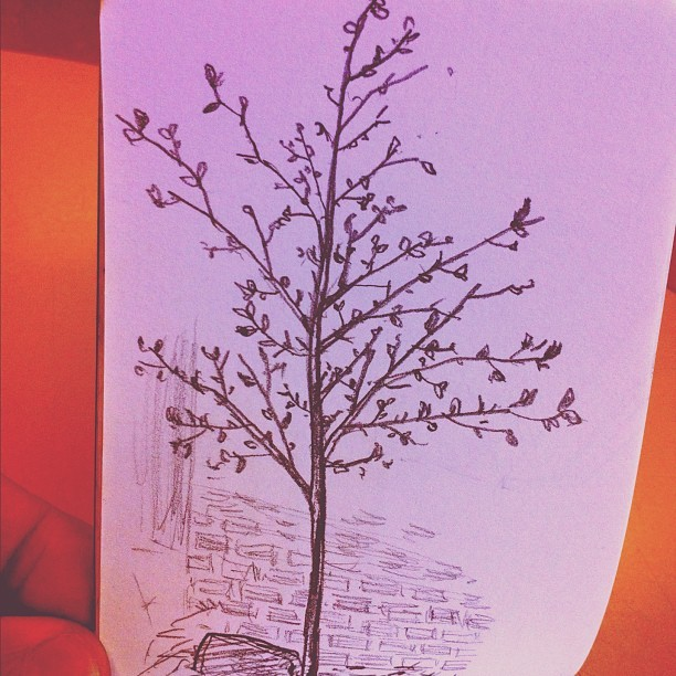 Halfway decent tree. #sketchbook  (Taken with Instagram)