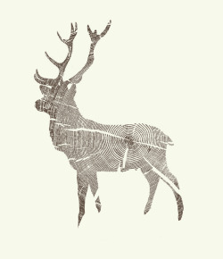 kylenaylordesign:  Wood Grain Stag