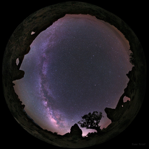 ikenbot:  Fish-eye Lens Shows a Beautiful Starry Sky above Utah