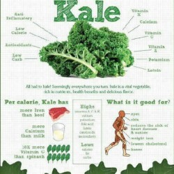 athleticsistas:  Kale