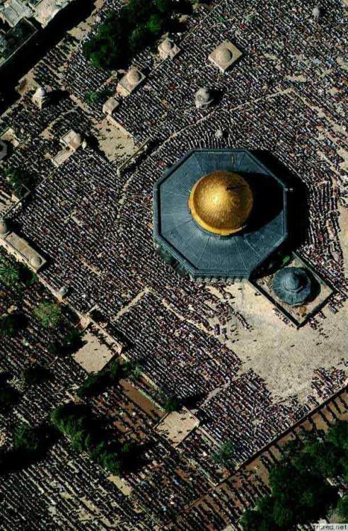 skindust:  Dome of the Rock mosque in Al Quds (Jerusalem)