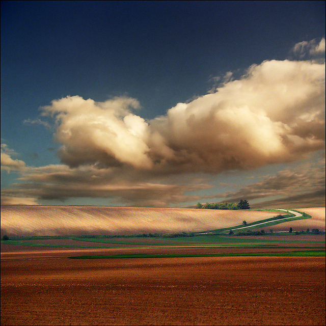 Fields by Katarina 2353 on Flickr.