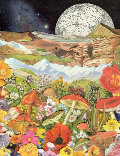 "thecollectivecollage:  ""Shrooms"" by Ben Giles"