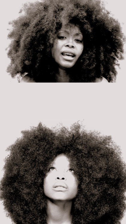 naceli-fe:  Erykah Badu.  The fro just awesome