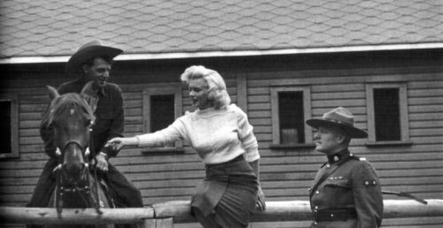 #Marilynettes ~  The men can't stop staring at her, but the horse could care less. LoL [1953 by  John Vachon]