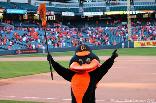 stevesworld2012:  Orioles Sweep the Rays! Championship bound!
