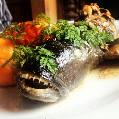 Catch of the day #scarybuttasty (Taken with Instagram at Fleurs Place)