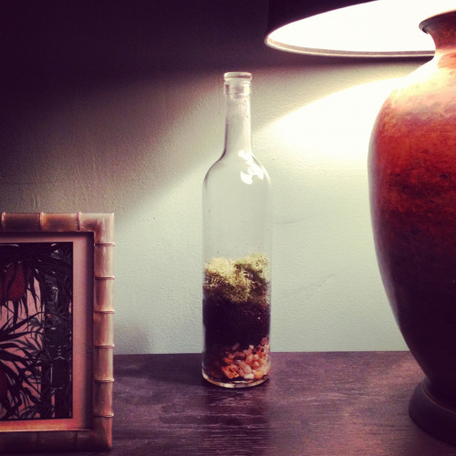 Making terrariums now, I guess.