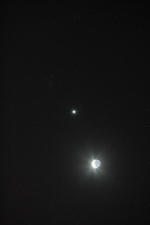 cometsmeteoroids:  Conjunction of Venus, Moon & M44 by Conrad Jung
