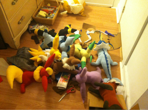 The first thing you see when you walk into my apartment. Lots of plushies! Pabu and Cake were lonely and wanted to have a party with the eeveelutions!!!
