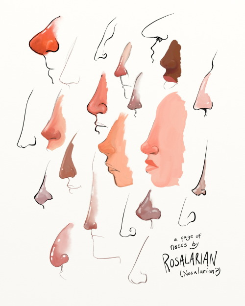 A page of noses. My favorite body part. I spent over two hours just drawing noses last night and it made me so happy. So much variety, and I've barely scratched the surface. Also, did you know there is a tumblr called nasophilia that is just pictures of awesome noses? I love this thing.