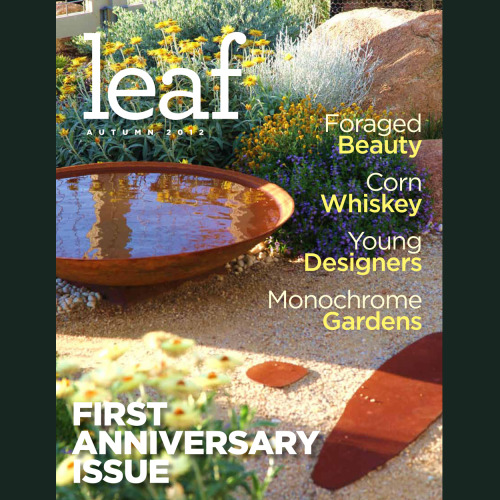 leafmag:  The First Anniversary Issue of Leaf Magazine is live!  Please feel free to share it!
