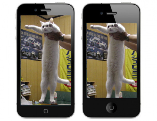 yggdrasilly:  The iPhone 5, explained.