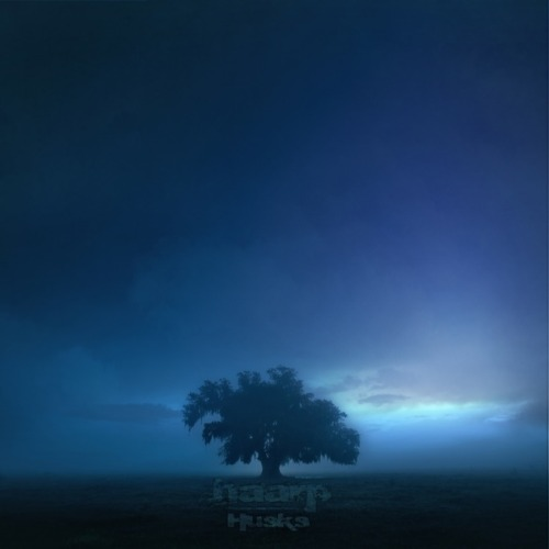 "haarp's new album, ""Husks"", will be released on Tuesday the 18th, but until then you can listen to it in full with us right here!"